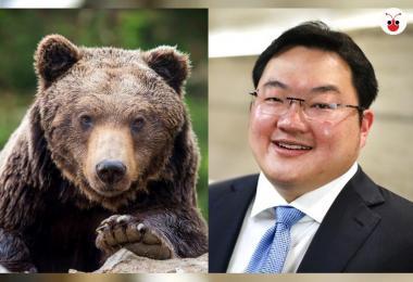 刘特佐整容如今拥有熊脸