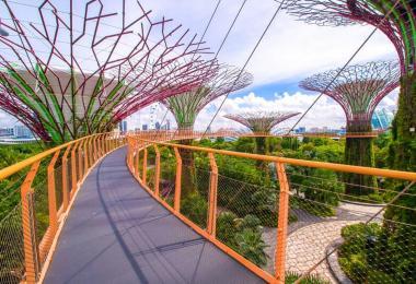 滨海湾花园花穹