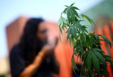 墨西哥民众抗议大麻被合法化