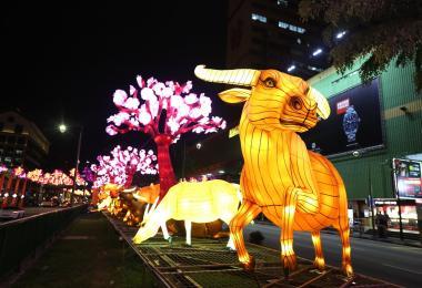 牛车水牛年灯饰