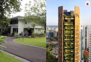 那森路优质洋房&EDEN公寓