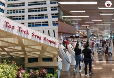 樟宜机场与陈笃生医院新增感染群