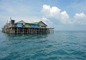 Malaysian Kelong Fishing