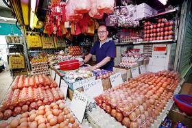 免惊!马国鸡蛋不来,新加坡也有蛋吃。