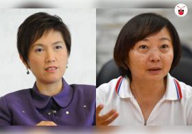 杨莉明和李美花