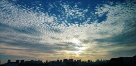 早起的鸟儿有美景看。(取自王蝶琪面簿)