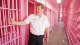 你能猜得出这个粉色空间是什么地方吗?(视频截图)