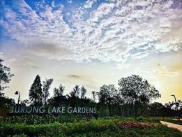 """裕廊湖花园(Jurong Lake Gardens)里头一共有三大""""园"""",每个角度的景致都不一样。(Instagram)"""