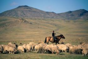 """成吉思汗的庇佑让蒙古零本土病例,免于被冠病""""征服""""?"""