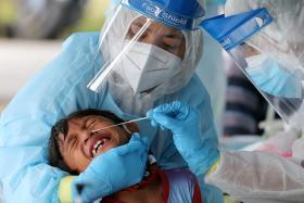 马国医护人员采集冠病样本