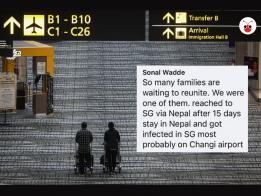 一位来自印度,持家属签证在星展银行工作的女子梭纳尔(Sonal Wadde)声称,自己取道尼泊尔来新加坡之后,可能在新加坡感染冠病病毒!