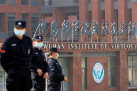 出于政治还是科学,冠病是否来自武汉实验室的争议为何迟迟无法消退?